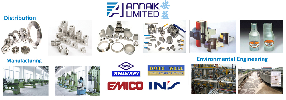 AnnAik Limited | A global leader in stainless flanges